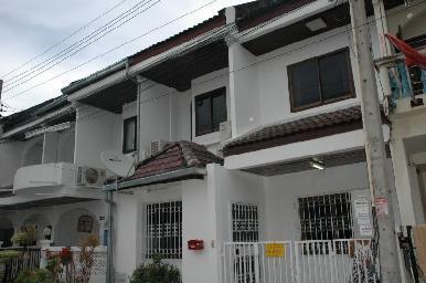 The Village  6