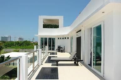 Palm Oasis 6