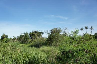 15 Rai land plot in Bang Saray 8