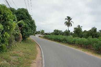 Bang Saray Land 4