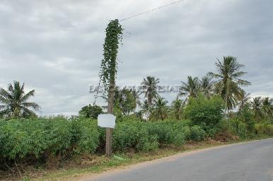 Bang Saray Land 2