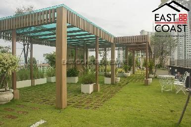 City Garden Tropicana 11
