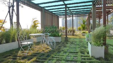 City Garden Tropicana 14