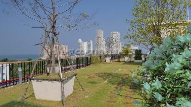 City Garden Tropicana 13