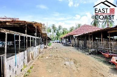 Farm Land For Sale 12