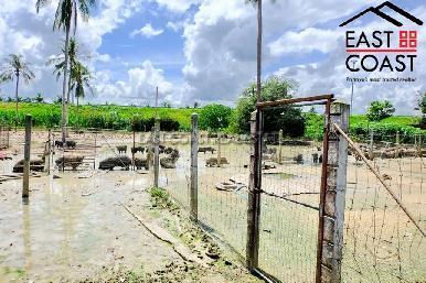 Farm Land For Sale 16