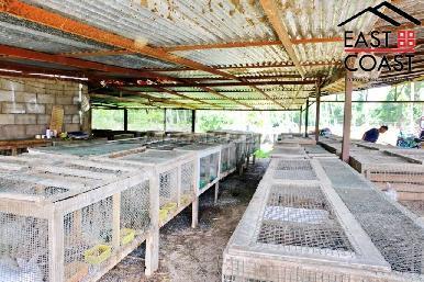 Farm Land For Sale 18
