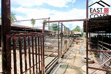 Farm Land For Sale 20