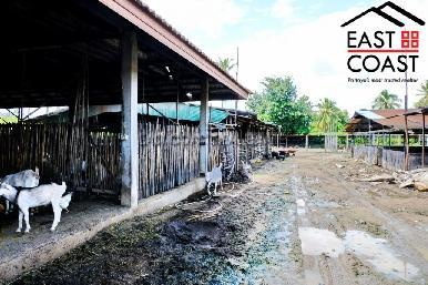 Farm Land For Sale 8