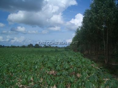 Land Nongpalai 6