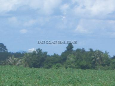 Land Nongpalai 3