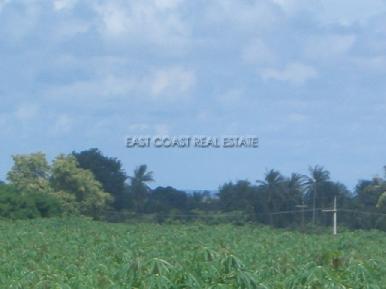 Land Nongpalai 2