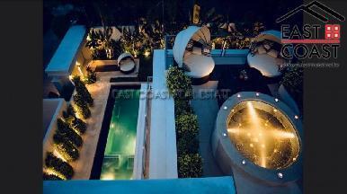Palm Oasis 13