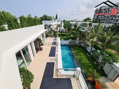 Palm Oasis 51