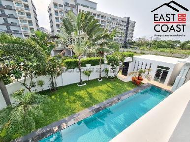 Palm Oasis 44
