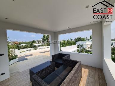 Palm Oasis 50