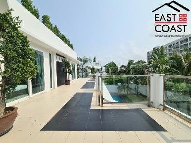 Palm Oasis 31
