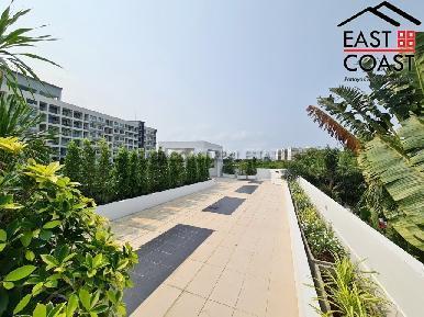 Palm Oasis 46