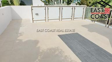 Palm Oasis 26