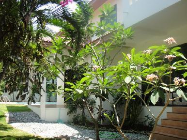 Paradise Villa  12