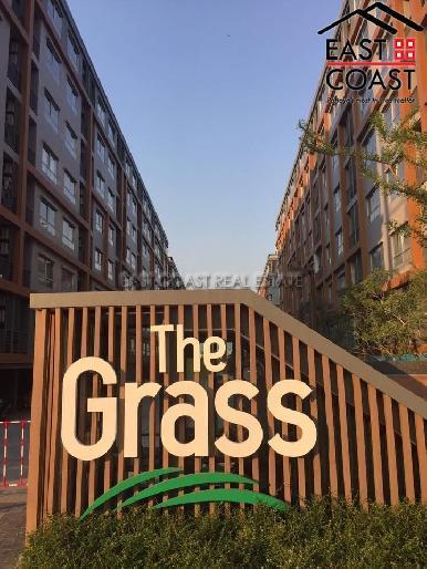 The Grass 2