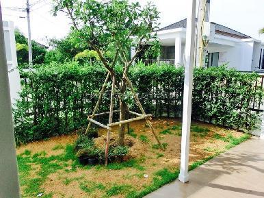 Uraiwan Park Ville 3