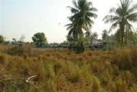 12 Rai in Pong 74205