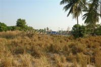 1 Rai Pong Land For Sale in  East Pattaya