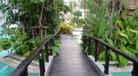 Amazon Residence 765619