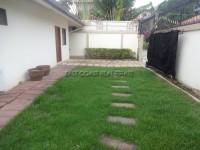 Avoca Gardens 1 58926