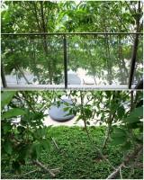 Baan Plai Haad 97974