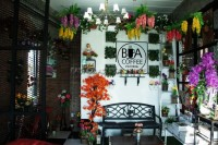 Bua Coffee Restaurant 801081