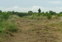 Charknok Land For Sale in  East Pattaya