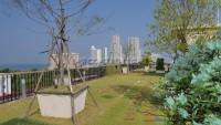 City Garden Tropicana 99577