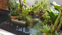 Classic Garden Home 959913