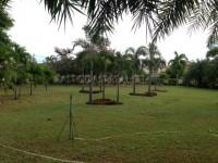 Classic Garden Home  960749