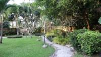 Coco Palm 1015812