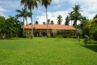 Coco Palm Huay Yai 66118