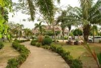 Dhewee Resort 696814