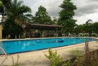 Dhewee Resort  65413