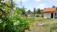 Hua Yai land for sale 97132