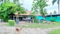 Huay Yai House 1057615
