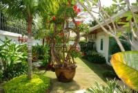 Jomtien Park Villas 544614