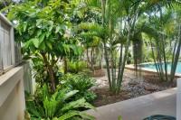 Kittima Garden 2 725217