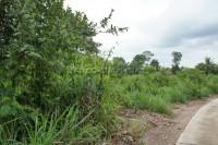 Land Baan Amphur 75014