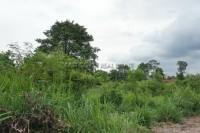 Land Baan Amphur 75017