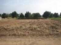 Land Mabprachan  61825
