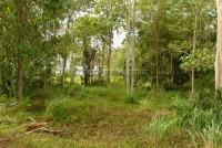 Land Near Nungnuch Garden 64662
