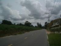 Land Nongplalai  62831