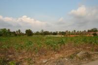 Land Pong  6171